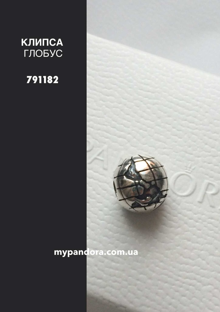 Копия IMG_5100